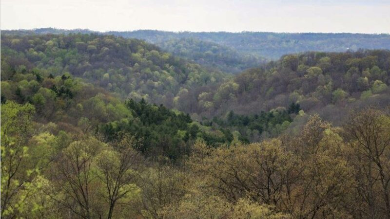 Federal Judge Blocks Further Oil And Gas Extraction on Ohio's Only National Forest